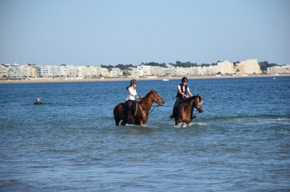 Cours d'équitation découverte Angers