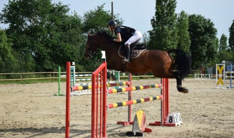 Saut d'obstacles Angers